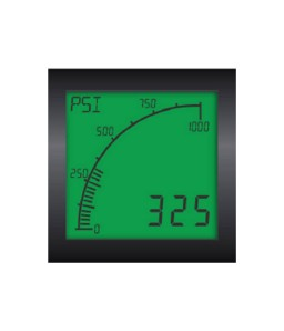 APM Custom Digital Process Meter Series